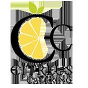 web-logo-trans